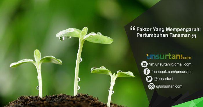 Faktor Yang Mempengaruhi Pertumbuhan Tanaman